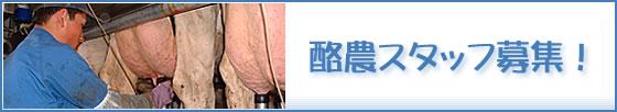 酪農スタッフ募集!JA中春別営農サポート協議会